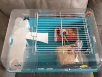 Hamster home cage