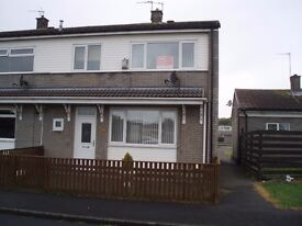 Three bed-roomed end terraced house to rent -good decorative order and excellent storage.