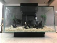 Fluval Edge Aquarium 23L Complete Set Up
