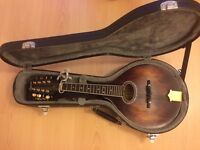Ozark 2260 Vintage Style Mandolin with Hardcase and Internal Fishman Pickup - Great Condition!