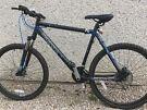 Men's barracuda bike