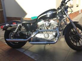 Harley Davidson sportster 883 100th anniversary