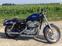 Harley Davidson Sportster XLH 883 Custom