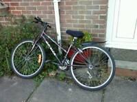 Lady's town bike
