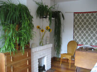 Eco-renovated fully furnished terraced house