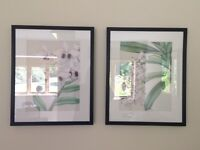 Two matching floral prints in black frames