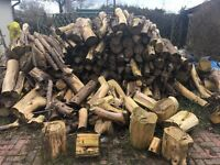 Hard Wood. A lot of ethically sourced, top quality, very locally sourced, dried, cut and sectioned