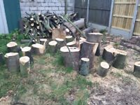 Tree logs slices trunks branches wood burner fire