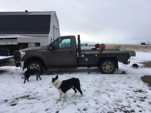 2016 Ford F-350 with Deweze bale deck