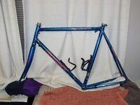 Giant Peloton 8400 road bike frame and fork