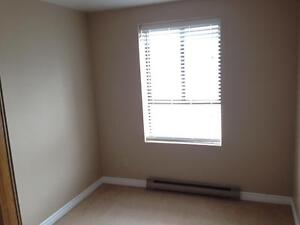 RARE 3 BD APARTMENT IN CENTRAL LOCATION! 114-17 Eldon Hall Pl Kingston Kingston Area image 9