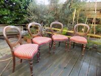 set of 4 Victorian style balloon back chairs