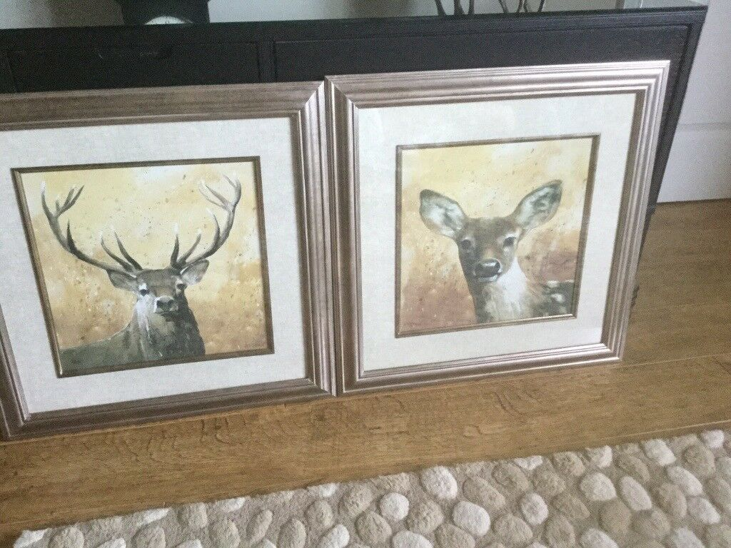 Pair of A Fletcher Stag Pictures 51cm Square