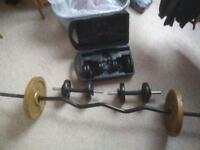 Dumbbell curved bar +weights
