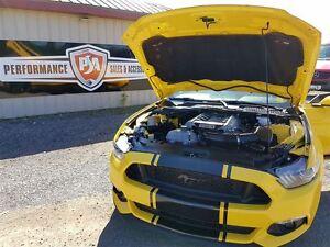 2016 Ford Mustang GT PREMIUM 5.0L H.O. Belleville Belleville Area image 19