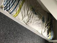 Dinosaur bedroom bundle