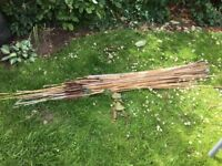 Bamboo canes various sizes.