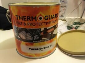 Thermoguard Fire & Protective Paint - Steel & Cast Iron - Thermocoat W