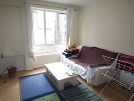 STUDIO - MINUTES FROM STATION - Falconet Court, Wapping High Street E1W - SHADWELL TOWER LIMEHOUSE
