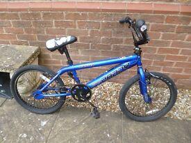 Rooster Big Daddy BMX bike in blue