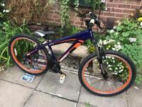 Diamondback Beta Bike