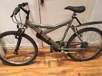 Flyte Apache mountain bike