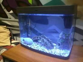 40L Fish Tank *BRAND NEW*