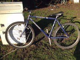 Specialized Rockhopper Adult's Bike - Needs Work