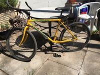 Mountain bikes, solid but needs renovating.