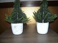 Paperchase Mini Glitter Christmas Trees in Concrete Pots - Pair