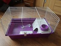 Ginue pig cage for sale