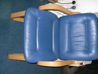 Set of 2 Blue chairs.