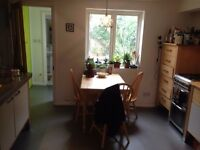 Small double in Kemp Town student house