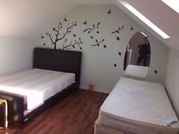 2 twin room, Canary Wharf Poplar All Saints east zone 1/2