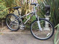 Giant Rock Bike
