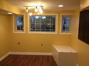 Professional Contractor/Handyman Services Belleville Belleville Area image 1