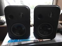 Professional speakers (JBL CONTROL ONE)