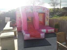Brand New princess bouncy castle new business