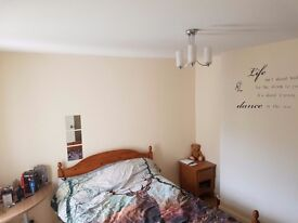 Double room in share house