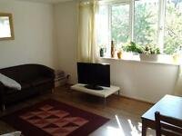 double room in a lovely 3 bedroom flat