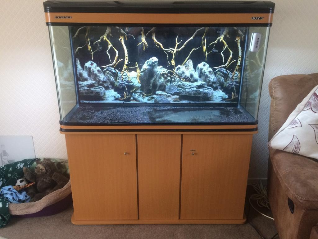 Fish Aquarium (Almost as newin Swindon, WiltshireGumtree - 300 litre Fish Aquarium for sale. Less than a year old. Selling due to change in family circumstances. Including 1400 ltr per hour, nearly new External Filter worth £100. Heater from Fluval. Spare sponges, bio Filter and much more in my shed. All of...
