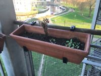 Terracotta window planting box with balcony rail support