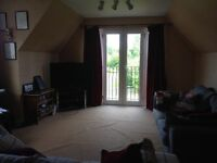 Room to rent in large 4 bedroomed detached home