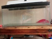 Large Glass Fish Tank with lid