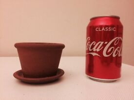 Mini clay plant pot with clay tray - perfect condition