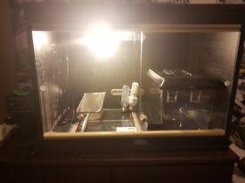 Lizard Enclosure *heatmat, cricket feeder heat bulb and UVB bulb included*