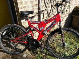 Mountain bike Sabre kinetic Sportz
