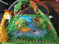 FisherPrice Rainforest play mat