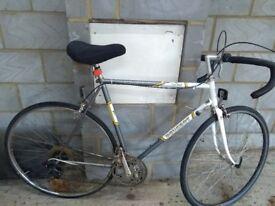Vintage Peugeot bike for men.