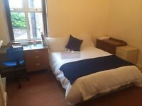 professionals house share available